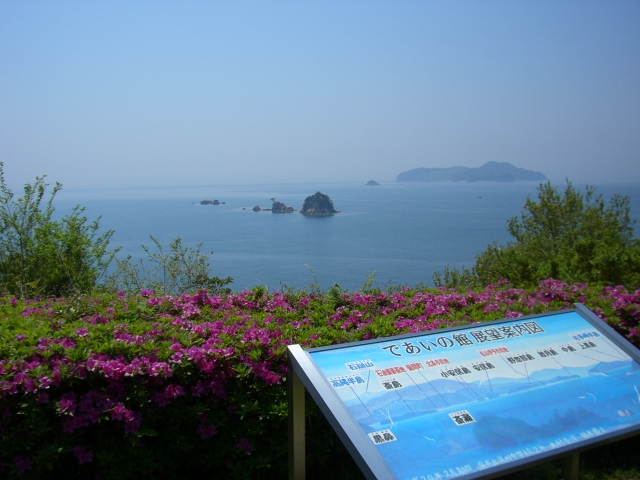 とびしま海道-ツツジと海